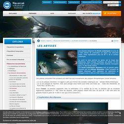 Les abysses expliquées à Nausicaa – Centre National de la Mer
