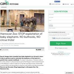 texte de la pétition: Hannover Zoo: STOP exploitation of baby elephants. NO bullhooks, NO circus tricks!, Germany