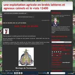 FAIRE DU BEURRE AVEC DU LAIT DE BREBIS - une exploitation agricole en brebis laitieres et agneaux calmels et le viala 12400