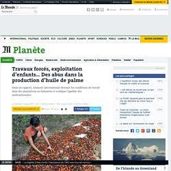 Travaux forcés, exploitation d'enfants… Des abus dans la production d'huile de palme