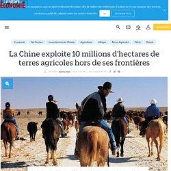 La Chine exploite 10millions d'hectares de terres agricoles hors de ses frontières - Le Parisien