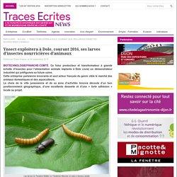 Ynsect exploitera à Dole, courant 2016, ses larves d'insectes nourricières d'animaux