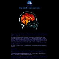 Exploration du cerveau