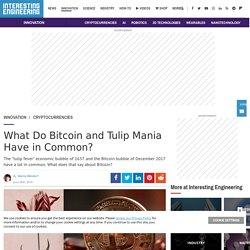 Explore the Similarities between Bitcoin and Tulip Mania