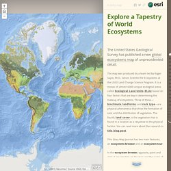 Explore a Tapestry of World Ecosystems