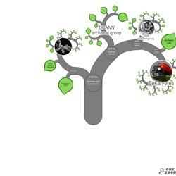 OneZoom: l'evoluzione delle specie animali in un albero interattivo