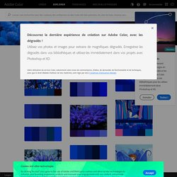 Les plus populaires - Adobe Color CC