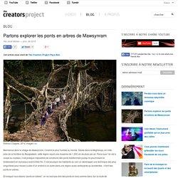Partons explorer les ponts en arbres de Mawsynram