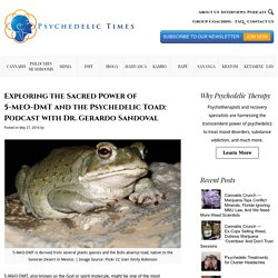 Exploring the Sacred Power of 5-MeO-DMT and the Psychedelic Toad: Podcast with Dr. Gerardo Sandoval - Psychedelic Times