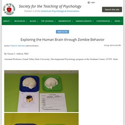 Exploring the Human Brain through Zombie Behavior