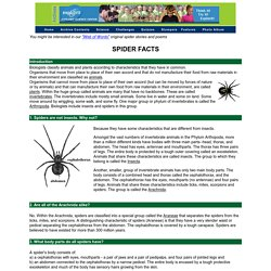 Spider Science Facts