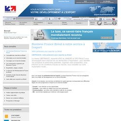 Export au Brésil avec les bureaux Business France
