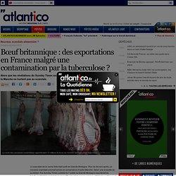 Bœuf britannique : des exportations en France malgré une contamination par la tu