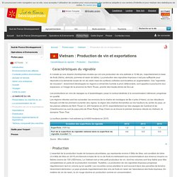 Production et exportations de vin vietnamiens - Vietnam