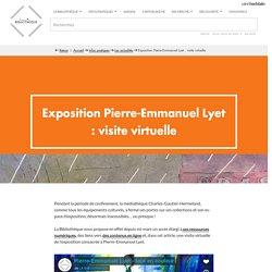 Exposition Pierre-Emmanuel Lyet : visite virtuelle