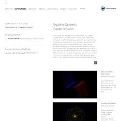 Antoine Schmitt - Haute tension - Exposition - Galerie Charlot
