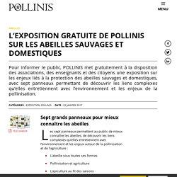 L'EXPOSITION GRATUITE DE POLLINIS SUR LES ABEILLES SAUVAGES ET DOMESTIQUES - Pollinis