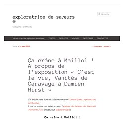 Vanités : Ça crâne à Maillol ! « exploratrice de saveurs