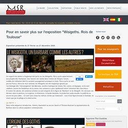"""Pour en savoir plus sur l'exposition """"Wisigoths. Rois de Toulouse"""""""