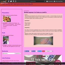 Sorbet express à la fraise au cook'in - Le blog de ma-passion-flexipan