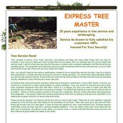 Tree Service Hurst