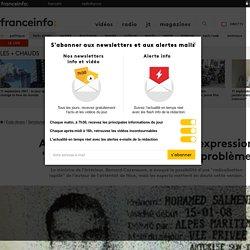 """France Info : Attentat de Nice : pourquoi l'expression """"radicalisation express"""" pose problème"""