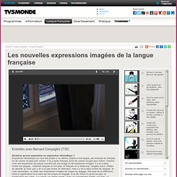 MONDE- Les nouvelles expressions imagées de la langue française- Entretien avec Bernard Cerquiglini (7'35)