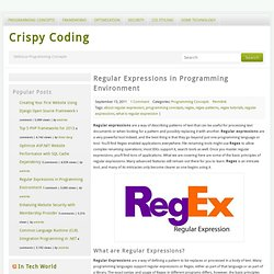Regular Expressions in Programming Environment