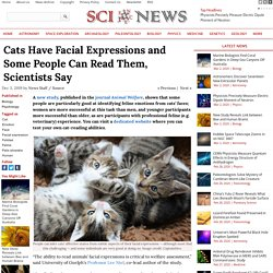 Cats Have Facial Expressions and Some People Can Read Them, Scientists Say