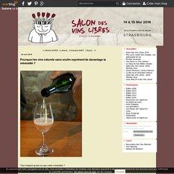 Pourquoi les vins naturels sans soufre expriment-ils davantage la minéralité ? - Salon des Vins Libres