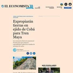 Expropiarán tierras en ejido de Cobá para Tren Maya