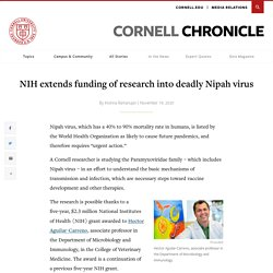 CORNELL_EDU 19/11/20 NIH extends funding of research into deadly Nipah virus