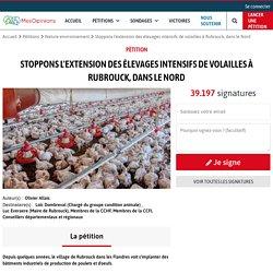 Stoppons l'extension des élevages intensifs de volailles à Rubrouck, dans le Nord