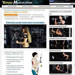 Triceps Poulie Haute Pronation - Musculation