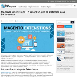 Magento Extenstions – A Smart Choice To Optimize Your E-Commerce