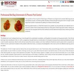 Bed Bug Extermination Phoenix AZ