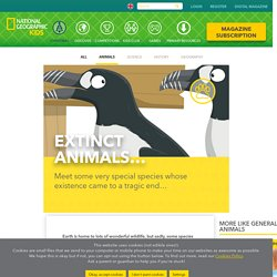 Extinct animals: facts for kids