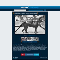 7 Extinct Animals: Rare Photographs