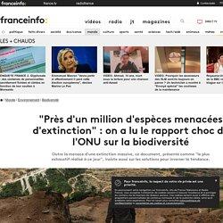 """""""Près d'un million d'espèces menacées d'extinction"""" : on a lu le rapport choc de l'ONU sur la biodiversité"""