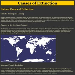 Extinction - Causes