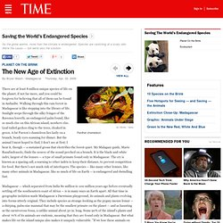 Time: The New Age of Extinction