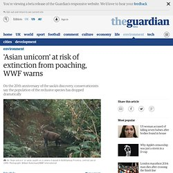 'Asian unicorn' at risk of extinction from poaching, WWF warns