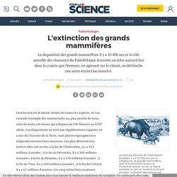 L'extinction des grands mammifères
