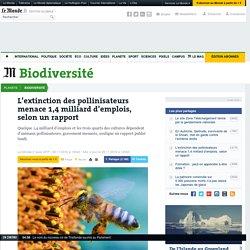 L'extinction des pollinisateurs menace 1,4milliard d'emplois, selon un rapport