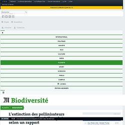 AFP 28/11/16 L'extinction des pollinisateurs menace 1,4 milliard d'emplois, selon un rapport