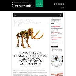 Laying blame: Humans caused mass megafauna extinctions in ancient past