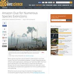 Amazon Due for Numerous Species Extinctions