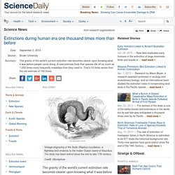 Extinctions during human era one thousand times more than before