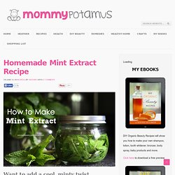 Mint Extract RecipeThe Mommypotamus