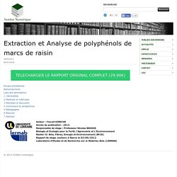 Extraction et Analyse de polyphénols de marcs de raisin